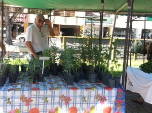 2° Feria Agroecológica