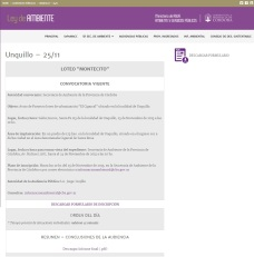 Audiencia Pública- 25/11